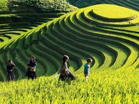 Vietnam Tourism: Past, Present and Future
