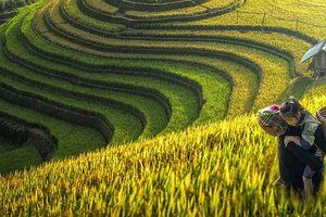 The Ethical Dilemma of Ethnic Tourism in Vietnam
